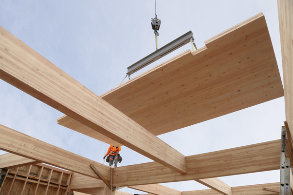 Mass Timber Construction – Where Performance Meets Sustainability and Aesthetics